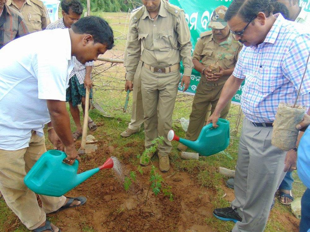 Birla-Tyres-CSR-Activities-Tree-Planting-1.jpg
