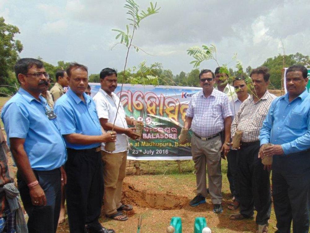Birla-Tyres-CSR-Activities-Tree-Planting-2.jpg