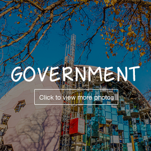 grid-government.png
