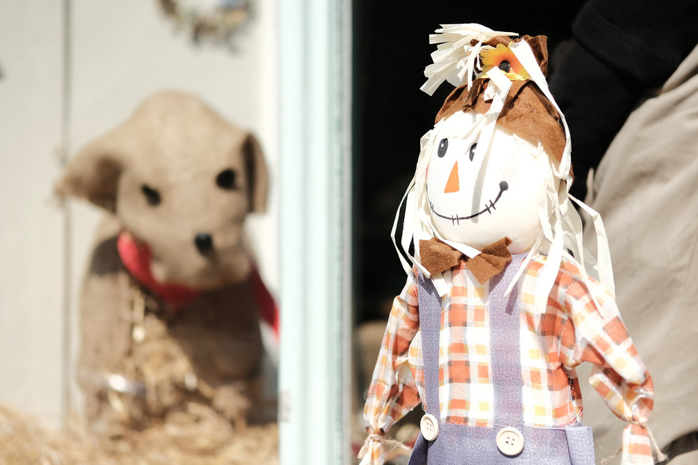 scarecrow fest-29413.jpg