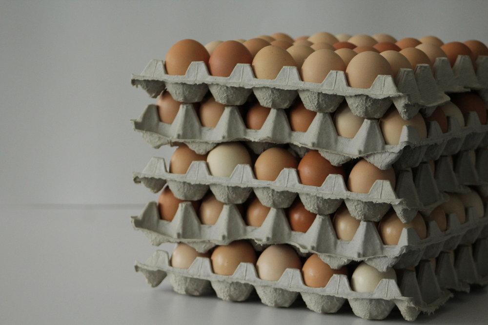 rise n shine eggs2.JPG