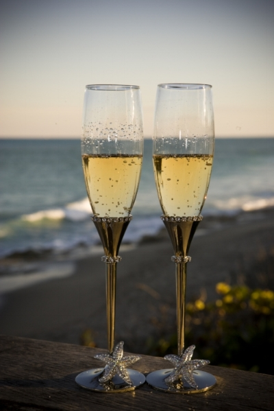 - reserve your wedding and receive a complimentary set of elegant, crystallized Champagne Flutes for your first toast.These exquisite Isabella Adams' Champagne Flutes, valued at $250.00 are designed with clear Swarovski® crystals and crystallized Starfish.