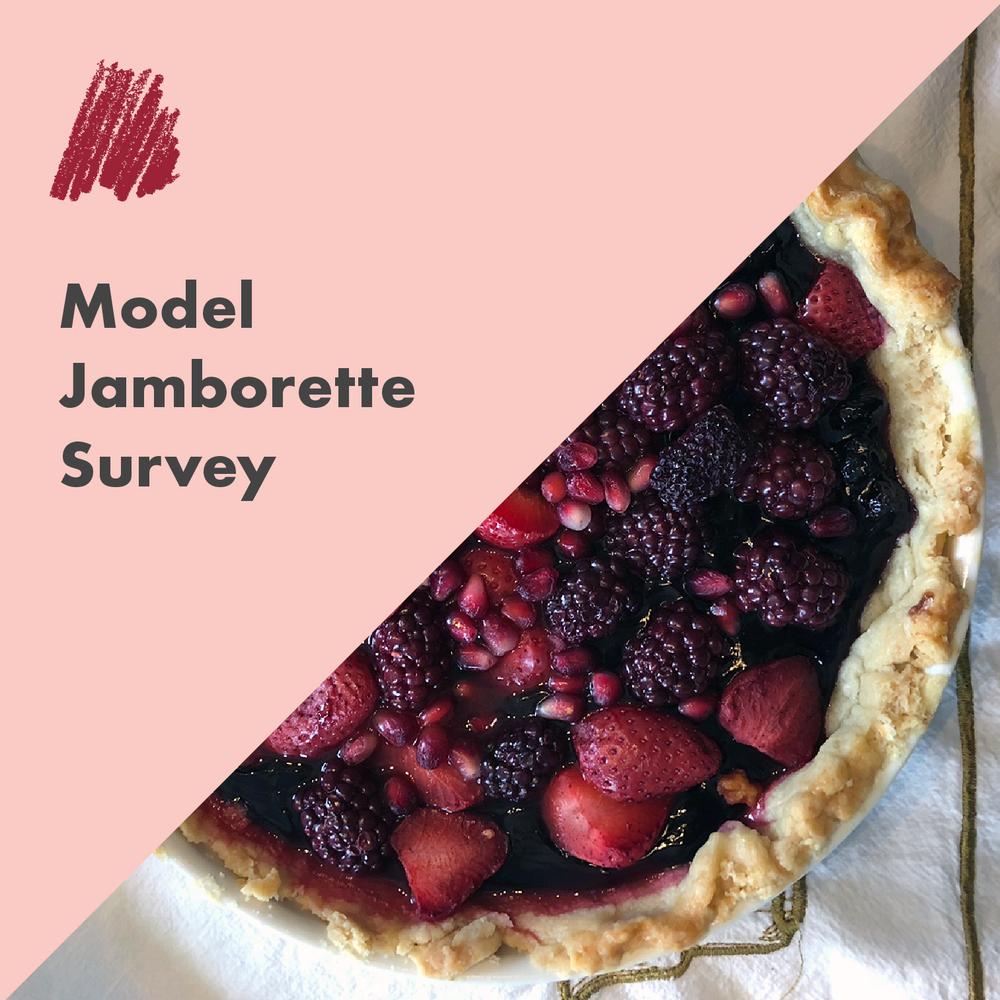 Model Jamborette Survey.png