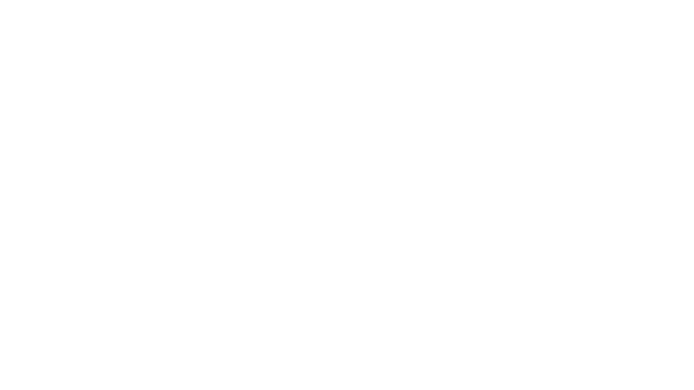 WD Sponsor websitre logo.png