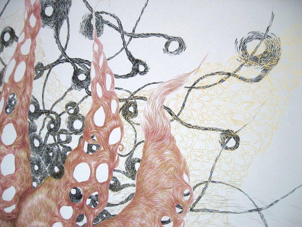 Hydrapussy (Golden Net) - Detail