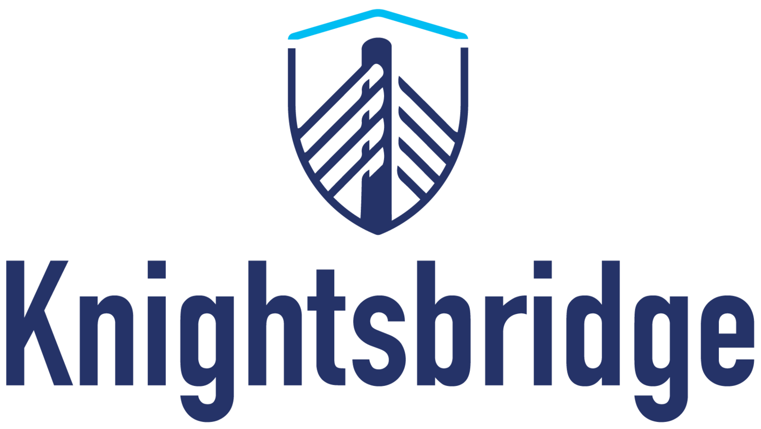 Knightsbridge Advisers, LLC.  |  A U.S. Early Stage Venture Capital Platform