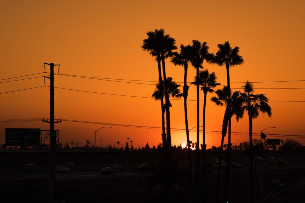 CallumBurns_Sunset (1 of 1).jpg