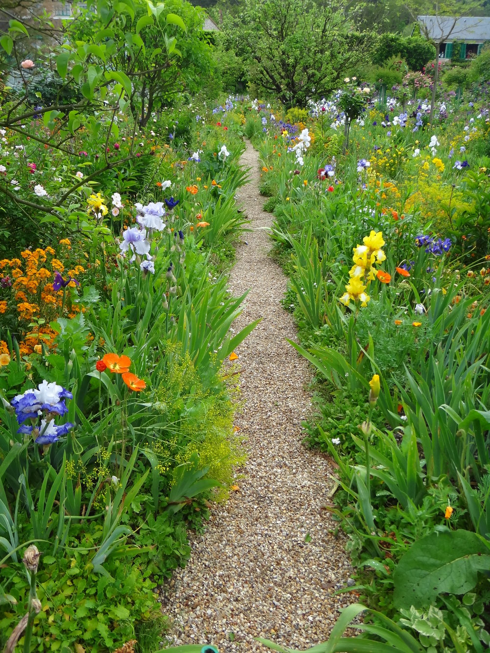 Pathway at Giverny