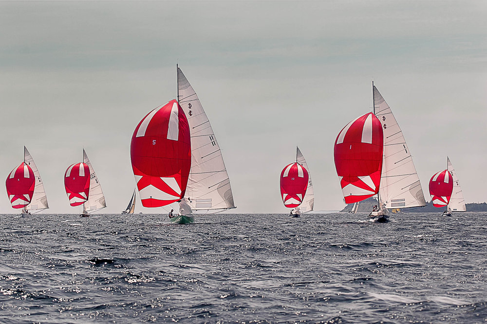Chester Race Week 2016