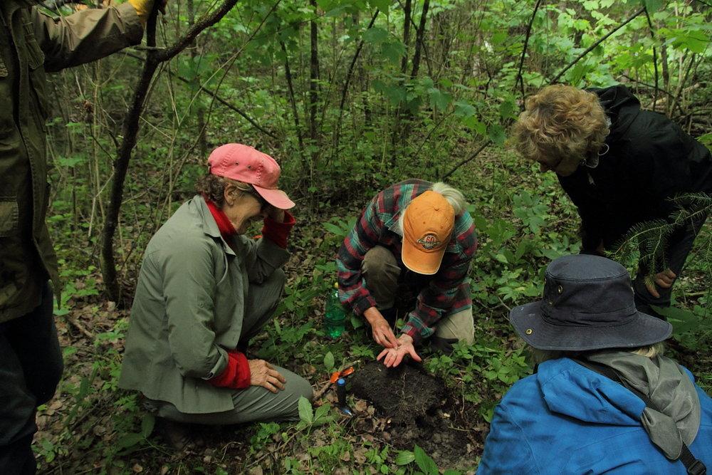 Finding quartz arrowhead (Laurel Culture)