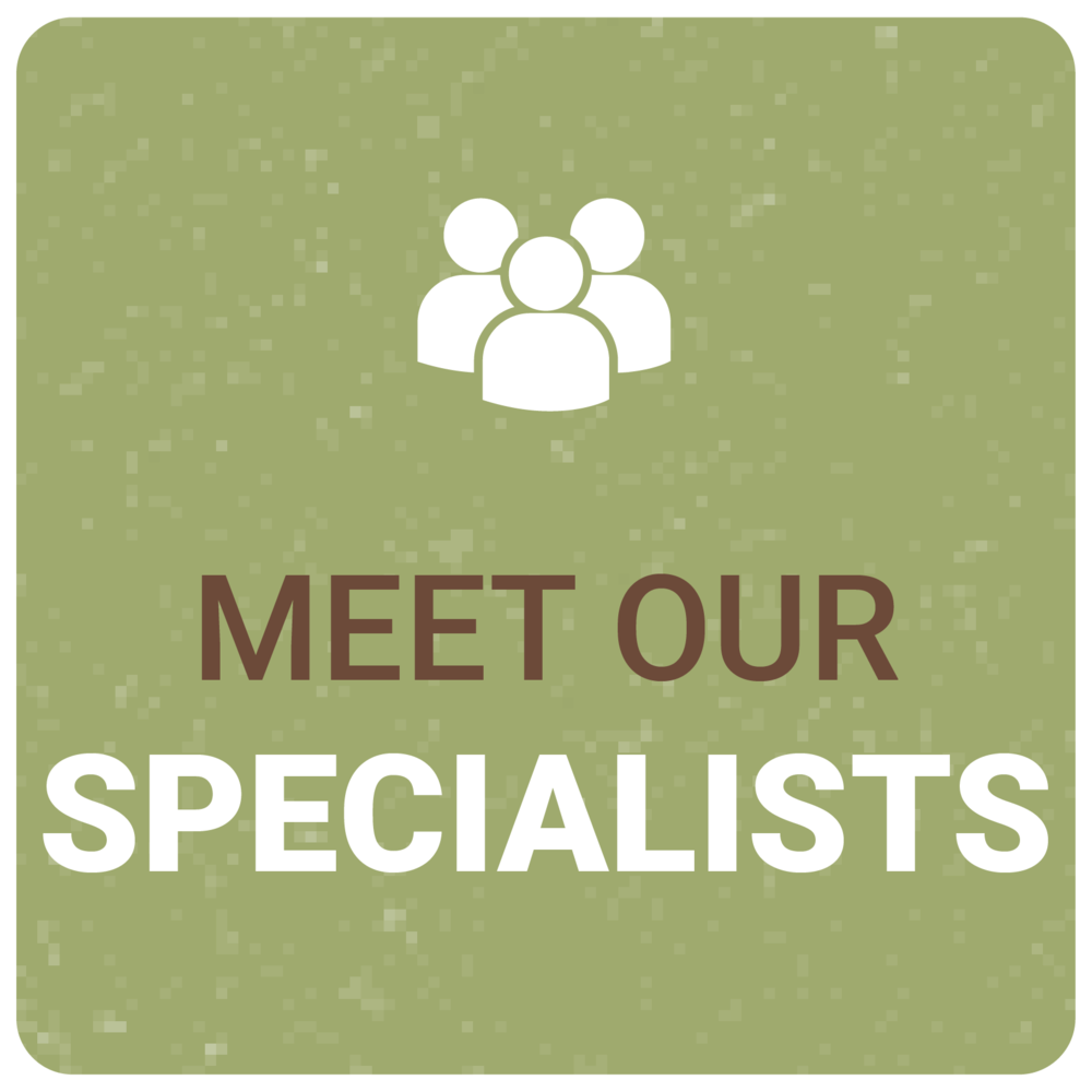 meet-our-specialists.png