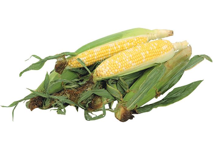 wabbit-corn.jpg