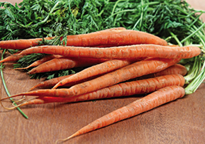 wabbit-Carrots.jpg