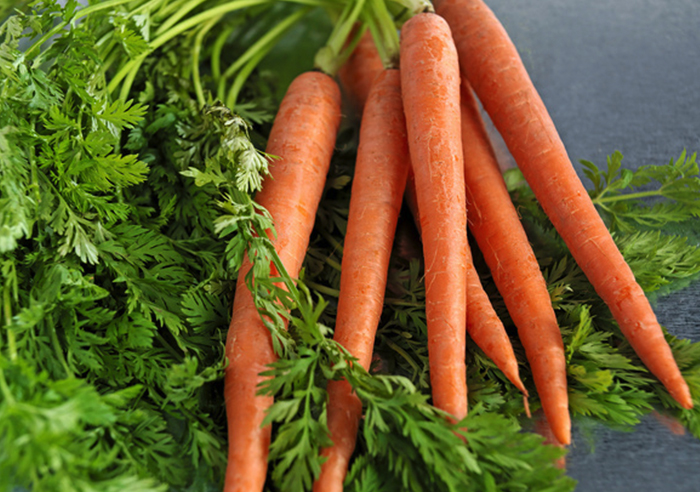 wabbit-Carrots copy.jpg