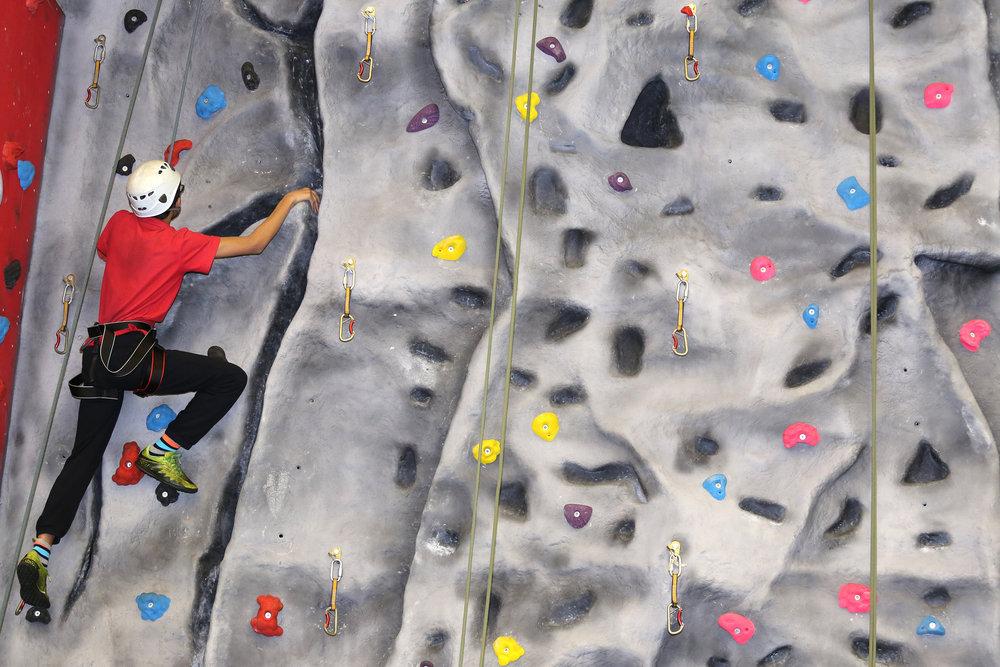 Single Climber.JPG
