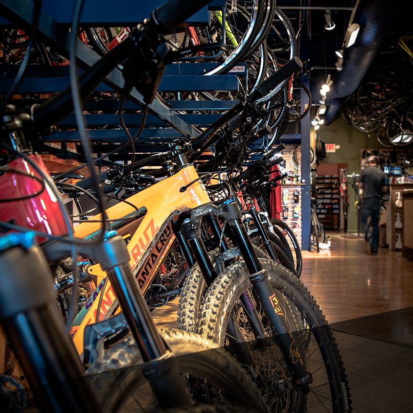 Bike Rentals -
