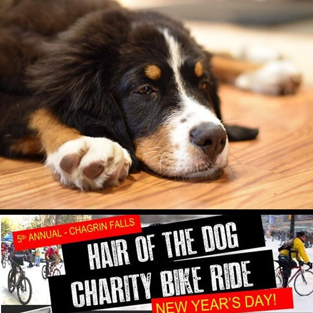 Come kick off your New Year with some bikes, chili, and beer.  All for a good cause!  Wheels roll on New Years Day at 12pm from Chagrin Falls Town Hall.  This fun, social ride will conclude around 1pm for food, socializing, and raffles.  Proceeds all go to @bikevelosano and Chagrin Falls Jaycees.  Rider registration is $35 and non-riders are welcome to come join the party ($15 adults/ $5 kids) and help support the cause! . . #hank #hairofthedog #chili #bikes #chagrinfalls #outside