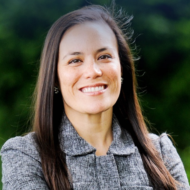 Gina Ortiz Jones, TX-23   MA | Airforce vet | Trade and intelligence advisor   LinkedIn  |  Campaign site