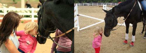 Board member Theresa Black with her daughter Kaylee and Ambassador horse Highgunner.