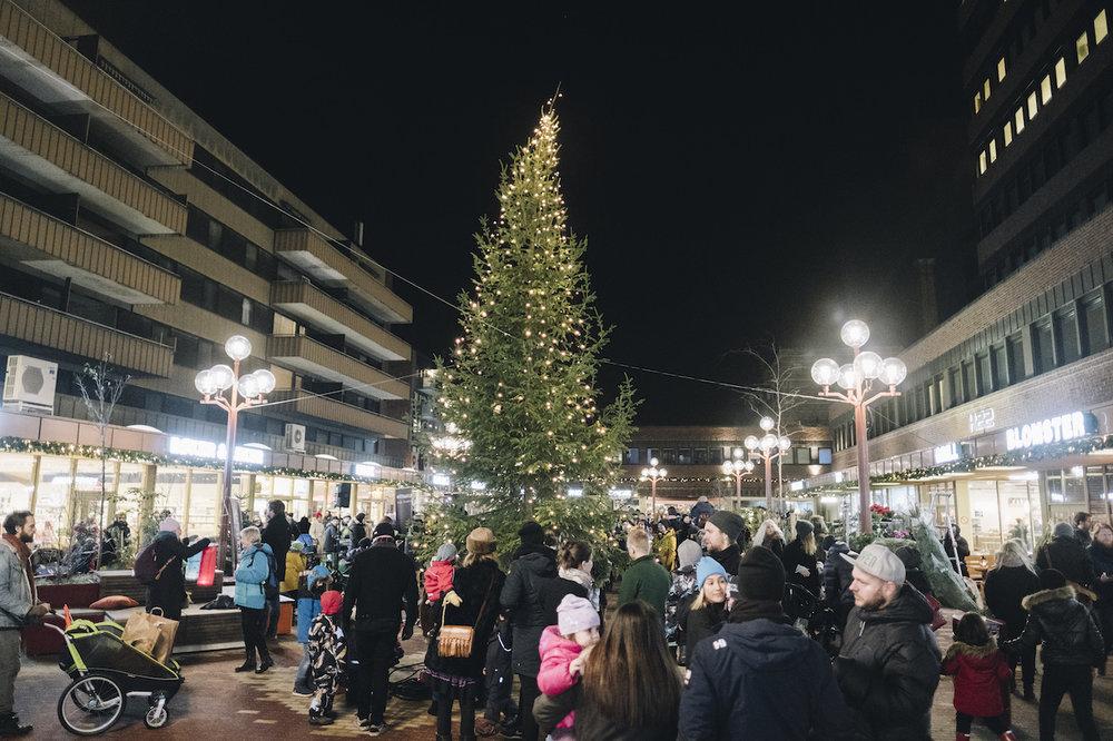 Fra julegrantenningen på Tøyen Torg lørdag 1. desember. Foto: Ola Vatn.