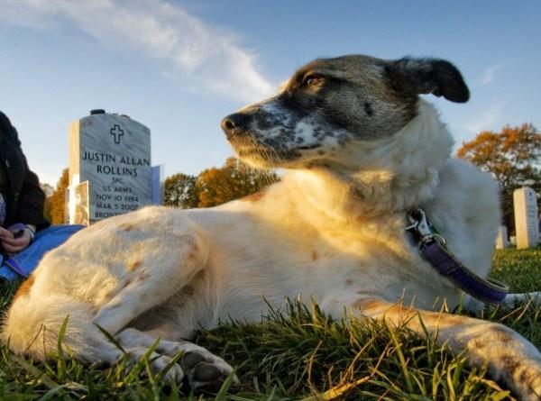 Fallen Soldier Justin Rollin's and Hero - via washingtonpost.com