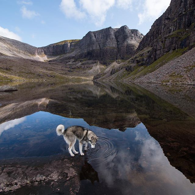 Went up Beinn Eighe with @chaz_sands over the weekend. Whole thing was covered in clouds when we arrived. The scale of these cliffs is insane, especially for Scotland. Feels more like the Alps when you're up there. Here's Fruin, our expedition leader taking a sip from the lochan.  Location: Beinn Eighe, Scotland