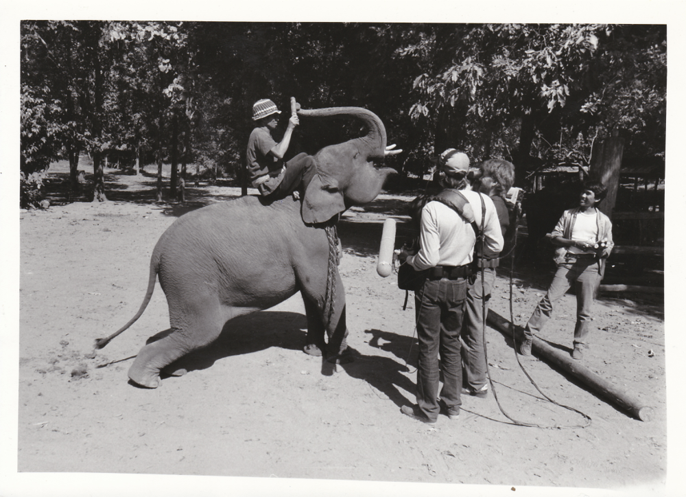 """Skip and crew in Thailand working on the documentary """"Elephant Games"""" (1985)"""