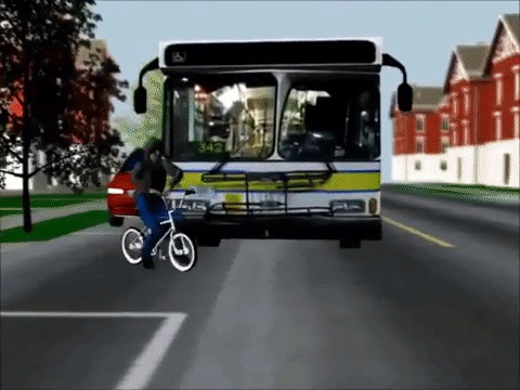 Bus v. Bicycle