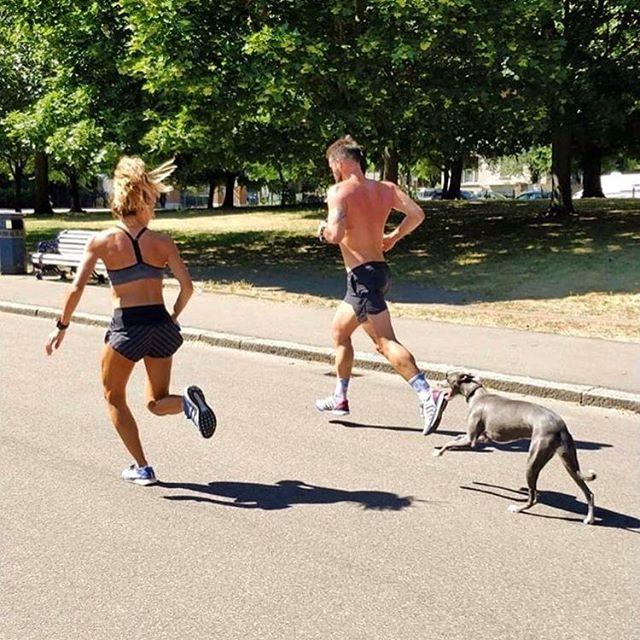 Who is going to win??!! #dogwednesday #runlondon #runtheworld