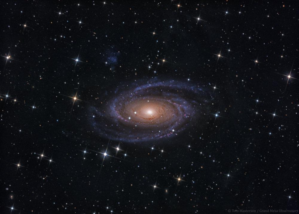 M81-GMO-System2-4hr10min-FINAL.jpg