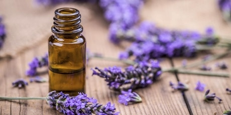 lavender essential oil is the queen of all oils