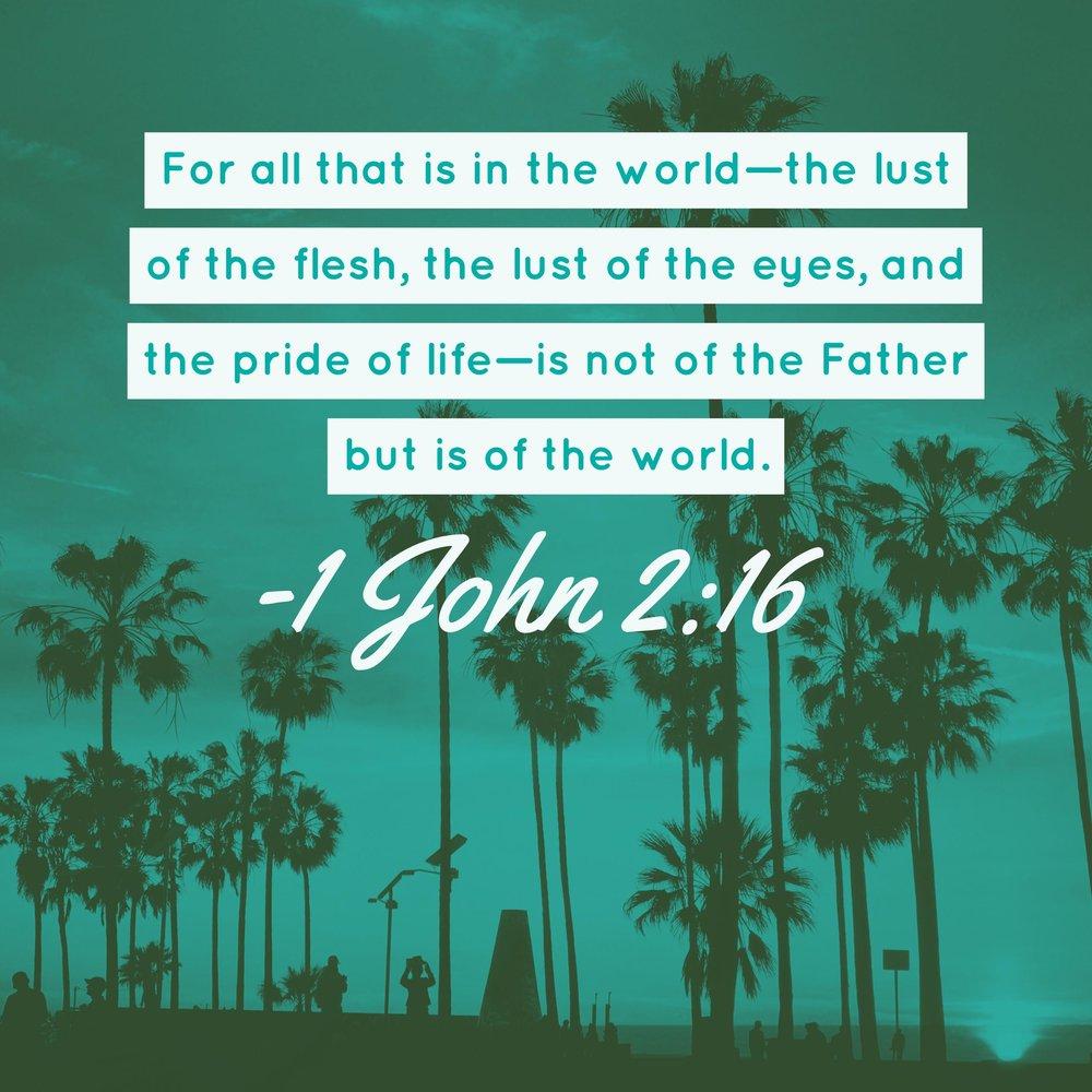 Bible_V2_IG.jpg