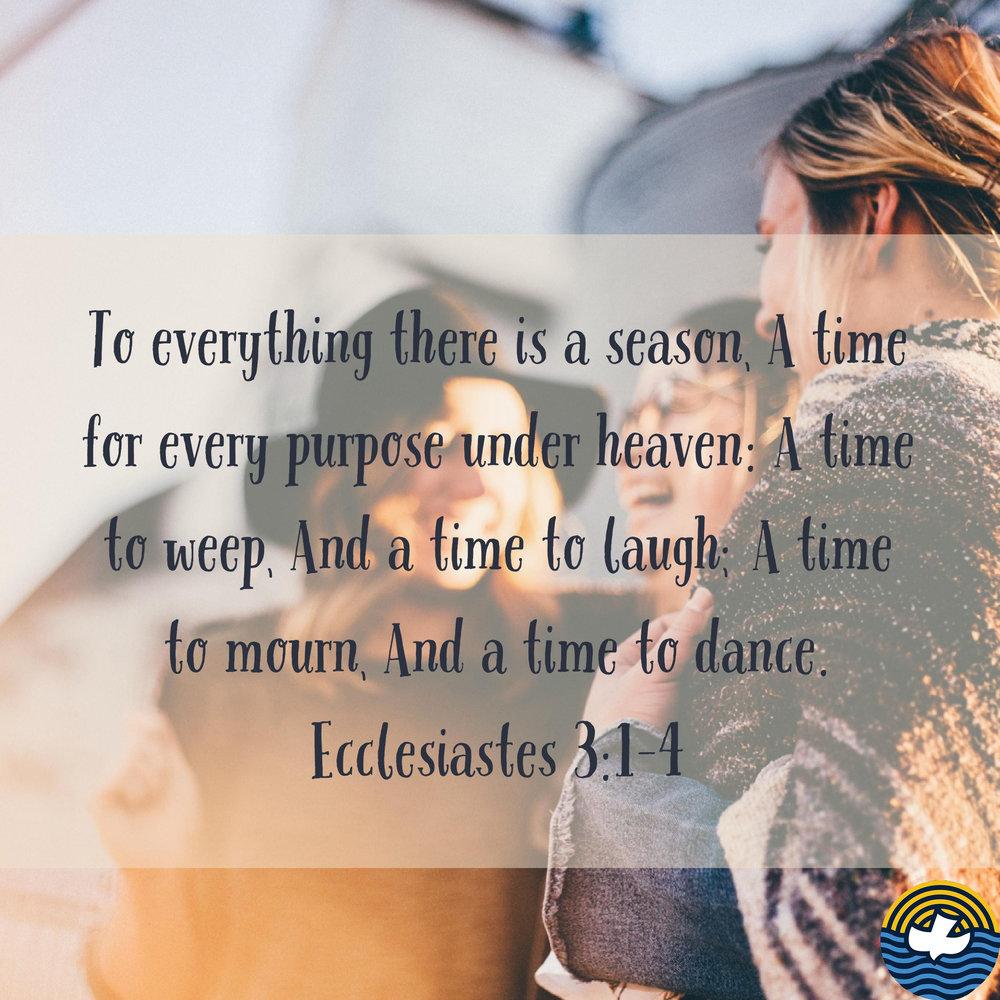 verse2ig copy 3.jpg