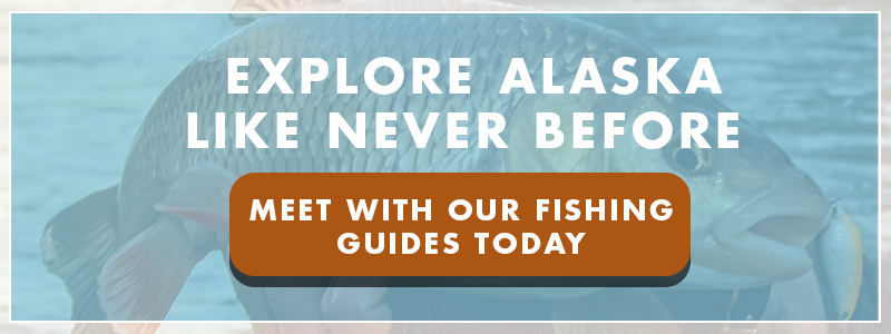 Preparing For Your Alaska Fishing Trip_CTA.jpg