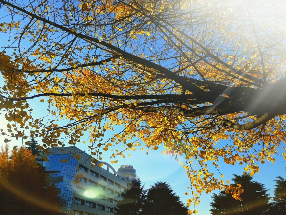 Photography Class_171210_0009.jpg