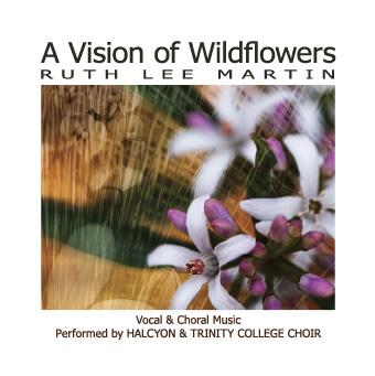 VisionOfWildflowers_COVER.jpg