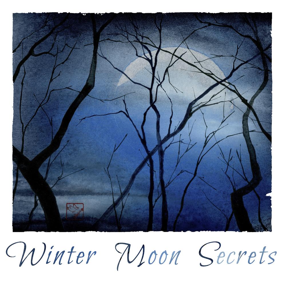 Winter Moon Secrets.jpg