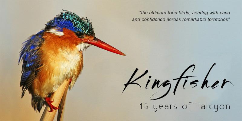 KingfisherOct_Final.jpg