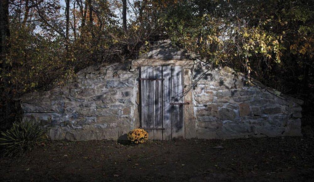 The Great New England Vampire Panic -