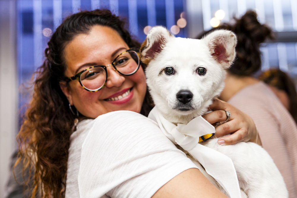 FosterDogs_DiscoveryPuppyParty_20180326_5013_©StaceyAxelrod.jpg