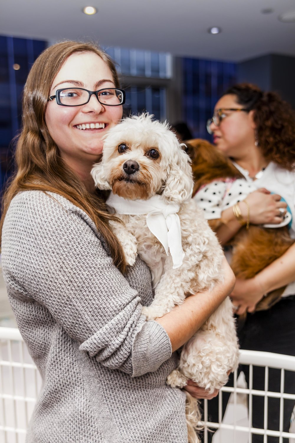 FosterDogs_DiscoveryPuppyParty_20180326_5233_©StaceyAxelrod.jpg