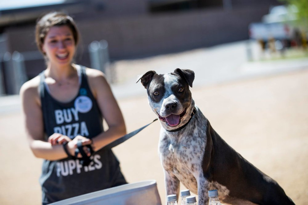 Sarah with her featured dog Nevada, still up for adoption at PACC in Tucson. Photo: Randy Metcalf