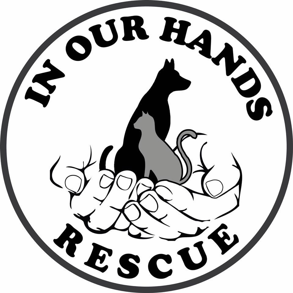 In Our Hands Rescue
