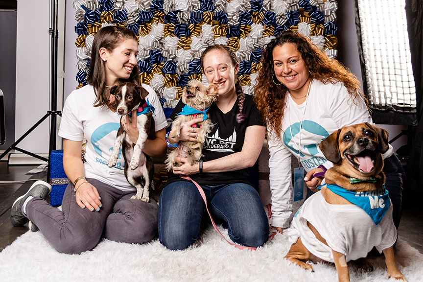 Photo by NYC Pet Photographer