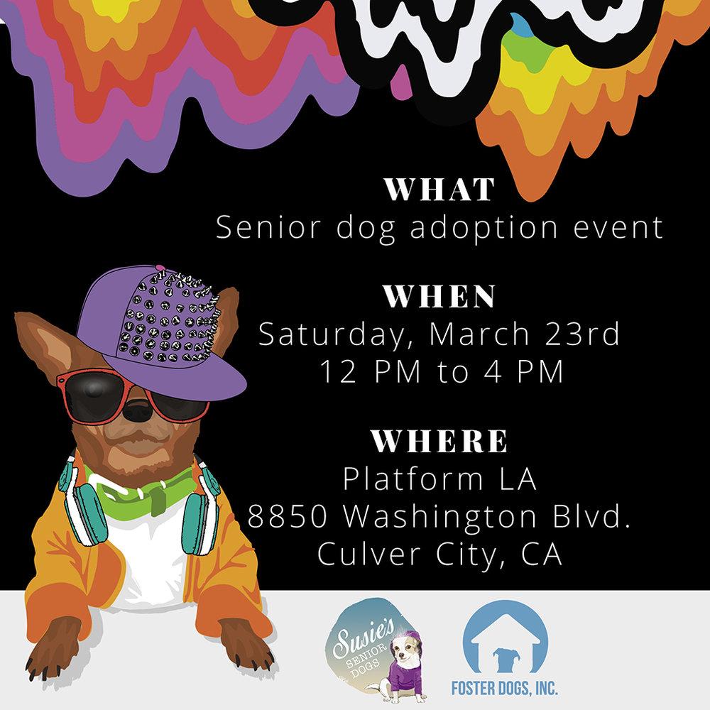 2019_SSD_Foster Dogs LA_PR1_s.jpg