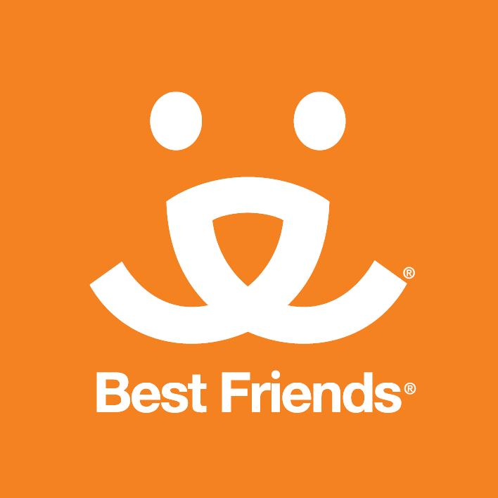BFAS logo.png