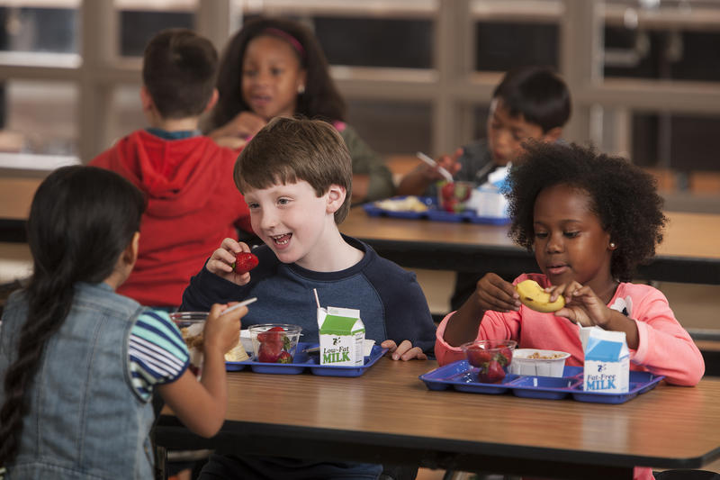 Kid having Lunch at School.jpg