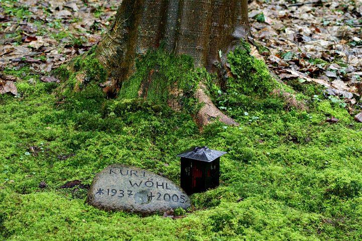 cremation1.jpg