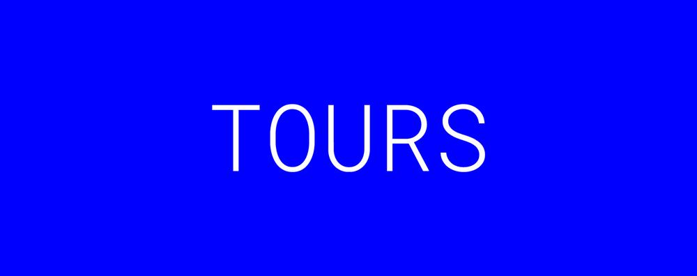 12-DISINI-Homepage-Tours.png