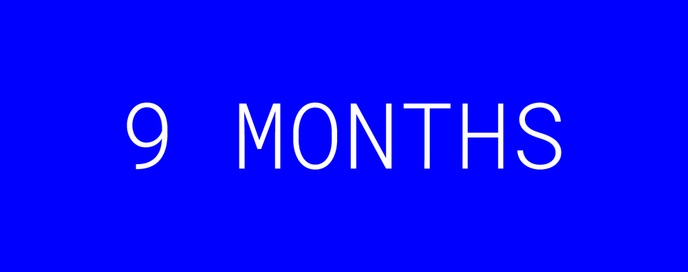 14-DISINI-Homepage-9-months.png
